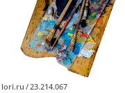 Купить «Палитра художника и грязные кисти», фото № 23214067, снято 15 ноября 2018 г. (c) Кузнецов Дмитрий / Фотобанк Лори
