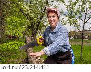 Пожилая женщина пилит дрова ножовкой. Стоковое фото, фотограф Вячеслав Палес / Фотобанк Лори