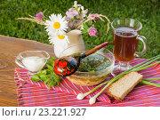 Натюрморт с окрошкой, квасом, зеленью, соусом и хлебом на деревянном столе. Стоковое фото, фотограф Елена Руй / Фотобанк Лори