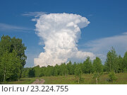 Вертикальное кучевое облако. Стоковое фото, фотограф Антон Ильяшенко / Фотобанк Лори