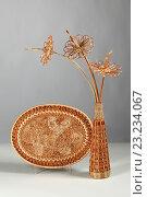 Купить «Плетение из лозы, поднос с вазой», фото № 23234067, снято 11 октября 2013 г. (c) Татьяна Попова / Фотобанк Лори