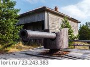 Купить «Корабельная пушка на остров Мудьюг», фото № 23243383, снято 10 августа 2014 г. (c) Сергей Гусев / Фотобанк Лори