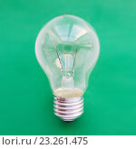 Купить «close up of bulb or incandescent lamp on green», фото № 23261475, снято 3 июня 2016 г. (c) Syda Productions / Фотобанк Лори