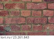 Купить «red brick wall texture», фото № 23261843, снято 18 июня 2015 г. (c) Syda Productions / Фотобанк Лори