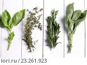 Купить «Различные травы на деревянном столе», фото № 23261923, снято 11 декабря 2019 г. (c) Sergejs Rahunoks / Фотобанк Лори