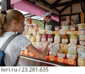 Купить «Торговый прилавок с разнообразными сортами меда в ярмарочном киоске на летнем фестивале «Московское варенье. Дары природы»», эксклюзивное фото № 23281635, снято 20 июля 2016 г. (c) lana1501 / Фотобанк Лори