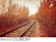 Железная дорога осенью, фото № 23288287, снято 23 февраля 2017 г. (c) Зезелина Марина / Фотобанк Лори