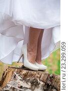 Невеста в белых туфлях на каблуках. Стоковое фото, фотограф Виталий Харин / Фотобанк Лори
