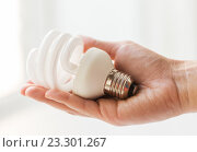 Купить «close up of hand holding energy saving lightbulb», фото № 23301267, снято 3 июня 2016 г. (c) Syda Productions / Фотобанк Лори