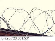 Купить «barb wire fence over gray sky», фото № 23301531, снято 30 сентября 2015 г. (c) Syda Productions / Фотобанк Лори