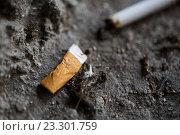 Купить «close up of smoked cigarette butt on ground», фото № 23301759, снято 9 июня 2016 г. (c) Syda Productions / Фотобанк Лори