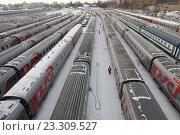 Купить «Москва, пассажирские составы на запасном пути Рижской железной дороги зимой», эксклюзивное фото № 23309527, снято 10 января 2016 г. (c) Дмитрий Неумоин / Фотобанк Лори