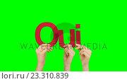 Купить «Woman hand holding letters Q, U and I», видеоролик № 23310839, снято 11 июля 2020 г. (c) Wavebreak Media / Фотобанк Лори