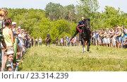 Купить «Девочка казачка скачет на лошади», фото № 23314239, снято 18 июня 2016 г. (c) Акиньшин Владимир / Фотобанк Лори