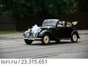 """Купить «""""Бентли"""" - свадебный ретроавтомобиль», фото № 23315651, снято 16 июля 2016 г. (c) Марина Шатерова / Фотобанк Лори"""