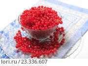 Ягоды красной смородины в миске на голубой салфетке. Стоковое фото, фотограф Яна Королёва / Фотобанк Лори