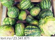 Купить «close up of watermelon at street farmers market», фото № 23341871, снято 27 июля 2015 г. (c) Syda Productions / Фотобанк Лори