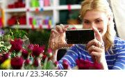 Купить «Woman taking photograph of flower bouquet», видеоролик № 23346567, снято 21 ноября 2018 г. (c) Wavebreak Media / Фотобанк Лори