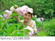 Купить «Пожилая женщина садовод улыбается в кустах розовых пионов», фото № 23349559, снято 27 июня 2016 г. (c) Максим Мицун / Фотобанк Лори
