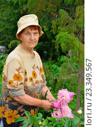 Купить «Пожилая женщина садовод стоит и улыбается рядом с розовыми пионами», фото № 23349567, снято 27 июня 2016 г. (c) Максим Мицун / Фотобанк Лори