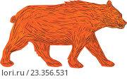 Купить «Американский черный медведь», иллюстрация № 23356531 (c) Aloysius Patrimonio / Фотобанк Лори
