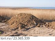 Купить «Куча грунта предназначенная для засыпания болота», фото № 23365339, снято 16 марта 2016 г. (c) Иванов Алексей / Фотобанк Лори