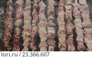 Купить «Много шампуров с шашлыком жарится на углях», видеоролик № 23366607, снято 12 апреля 2016 г. (c) Aleksey Popov / Фотобанк Лори