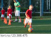 Купить «Тренировка по футболу», фото № 23388475, снято 10 августа 2016 г. (c) Evgenia Shevardina / Фотобанк Лори