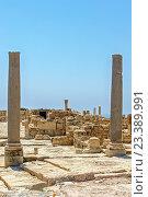 Купить «Развалины античного поселения Курион на Кипре», фото № 23389991, снято 23 июня 2012 г. (c) Евгений Дробжев / Фотобанк Лори