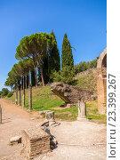 Купить «Вилла Адриана, Италия. Руины Канопа», фото № 23399267, снято 30 августа 2015 г. (c) Rokhin Valery / Фотобанк Лори