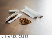 Купить «close up of marijuana or tobacco cigarette paper», фото № 23403895, снято 9 июня 2016 г. (c) Syda Productions / Фотобанк Лори