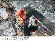 Купить «Запекание болгарского перца на шампуре в пламени костра», эксклюзивное фото № 23408931, снято 25 июня 2016 г. (c) Щеголева Ольга / Фотобанк Лори