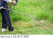 Садовник косит траву газонокосилкой. Стоковое фото, фотограф Koba Samurkasov / Фотобанк Лори