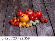 Маленькие помидоры, красные, желтые и зеленые. Стоковое фото, фотограф Вячеслав Чернявский / Фотобанк Лори