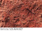 Деревянные опилки фон. Стоковое фото, фотограф Алексей Костенко / Фотобанк Лори