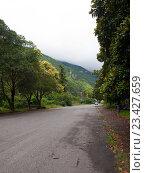 Купить «Абхазия. Гагры», фото № 23427659, снято 8 июля 2016 г. (c) Светлана Овчинникова / Фотобанк Лори