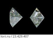 Купить «Алмаз на черном фоне», иллюстрация № 23429407 (c) Арсений Герасименко / Фотобанк Лори