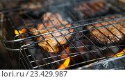 Жареная курица на мангале. Стоковое фото, фотограф Павел / Фотобанк Лори