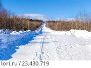 Купить «Зимник. Дорога в лесу со следами от снегохода», фото № 23430719, снято 14 марта 2015 г. (c) Евгений Ткачёв / Фотобанк Лори