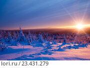 Купить «Красивый алый закат в зимних горах», фото № 23431279, снято 5 января 2016 г. (c) Евгений Ткачёв / Фотобанк Лори