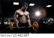 Купить «Мускулистый спортсмен в тренажёрном зале с штангой в руках», фото № 23442687, снято 23 августа 2016 г. (c) Restyler Viacheslav / Фотобанк Лори