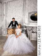 Жених с невестой. Роскошное свадебное платье. Стоковое фото, фотограф Черепанова Татьяна / Фотобанк Лори