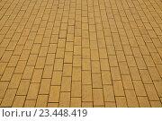 Купить «Жёлтая  тротуарная плитка», фото № 23448419, снято 26 апреля 2016 г. (c) Сергей Трофименко / Фотобанк Лори