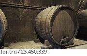 Купить «Большие бочки вина в темном подвале», видеоролик № 23450339, снято 30 августа 2016 г. (c) Михаил Коханчиков / Фотобанк Лори