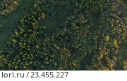 Купить «aerial view to green summer forest and power line», видеоролик № 23455227, снято 17 августа 2016 г. (c) Syda Productions / Фотобанк Лори