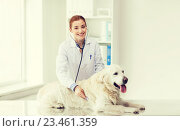 happy woman with dog and doctor at vet clinic. Стоковое фото, фотограф Syda Productions / Фотобанк Лори