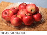Купить «Яблочный натюрморт», эксклюзивное фото № 23463783, снято 27 августа 2016 г. (c) Яна Королёва / Фотобанк Лори