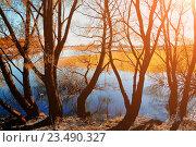 Купить «Осенний закатный пейзаж - осенние ивы на берегу маленькой реки», фото № 23490327, снято 5 мая 2016 г. (c) Зезелина Марина / Фотобанк Лори