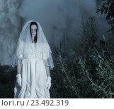 Купить «bride's ghost in the night forest», фото № 23492319, снято 16 июля 2016 г. (c) Майя Крученкова / Фотобанк Лори