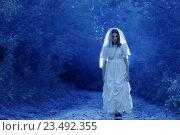 Купить «bride's ghost in the night forest», фото № 23492355, снято 16 июля 2016 г. (c) Майя Крученкова / Фотобанк Лори